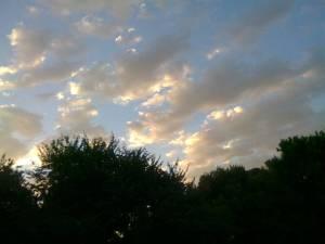 1_Photo0280