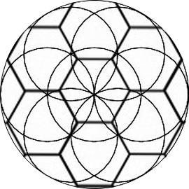 hexagon beehive flower of life pattern of the crystallarium